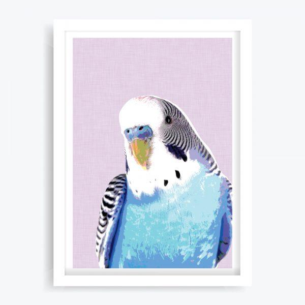 Blue Budgie Art Print