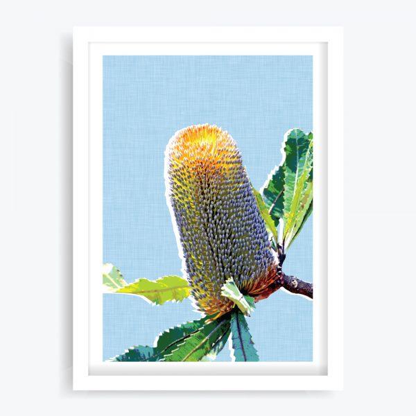 Banksia Blue Art Print