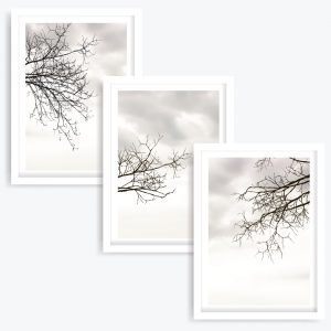 Seasons Art Prints (set of 3)