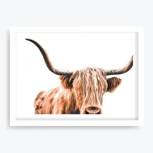 Hairy Highland Art Print