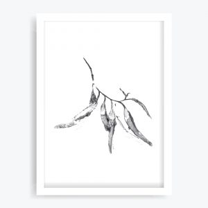 Eucalyptus Leaves #3 Art Print