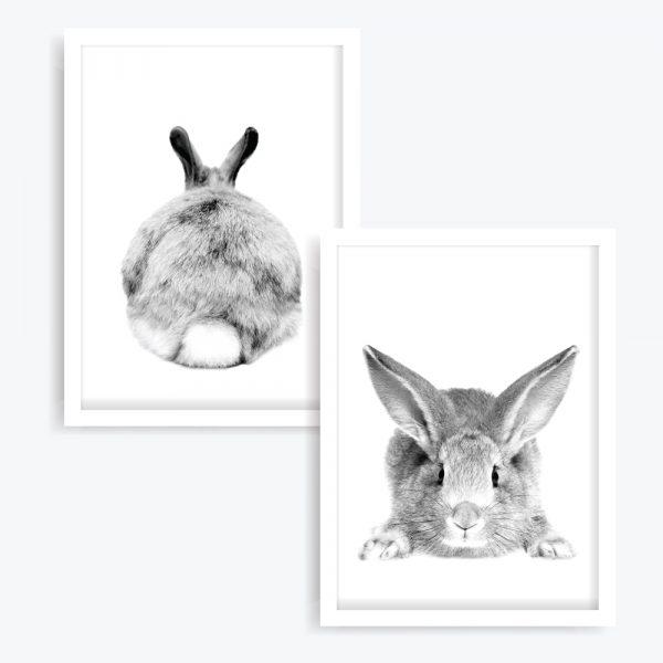 Mr. Cottontail Art Prints (set of 2)