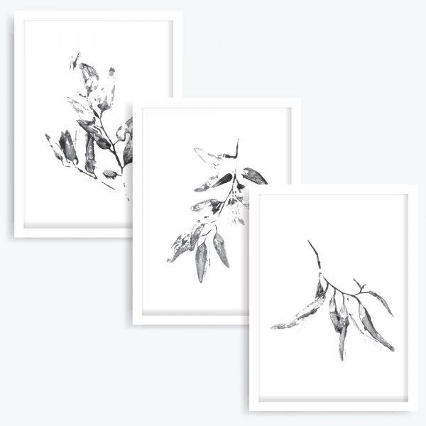 Gum Leaves Art Prints (set of 3)